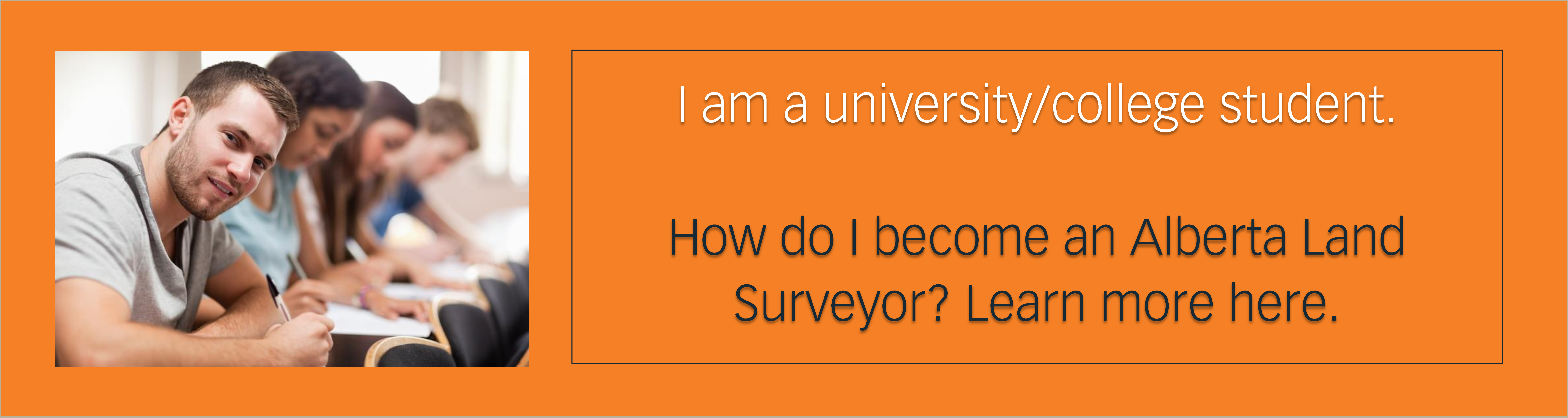 College/University Student